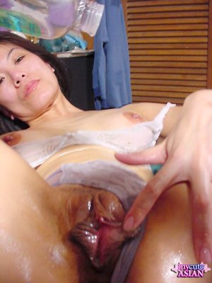 Asian Wet Pussy Porn