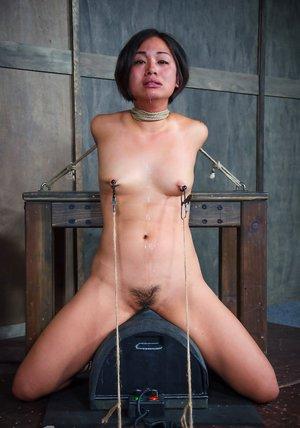 Asian Sybian Porn